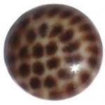 Cuoio Schuifsteen Leopard Brown 12 mm